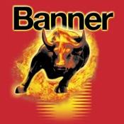 Banner - Electrice auto și baterii