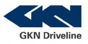 Gkn - Elemente direcție